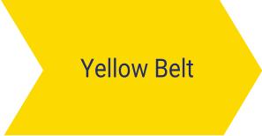 Szkolenie Six Sigma Yellow Belt