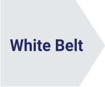 White Belt Lynsky Solutions
