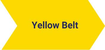 Yellow Belt Lynsky Solutions