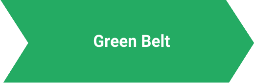 Green Belt Lynsky Solutions