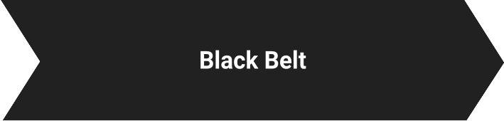 Black Belt Lynsky Solutions
