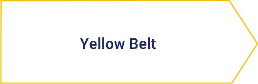 Yellow Belt szkolenie Lynsky Solutions