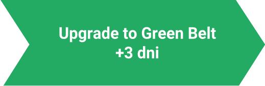 Upgrade to Green Belt Lynsky Solutions