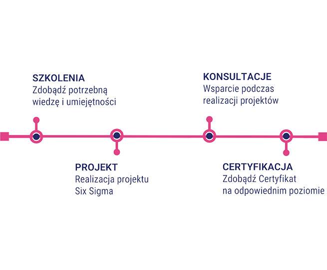 Wdrozenie Six Sigma Lynsky Solutions